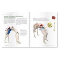 Ray Long Yoga Mat Companion lll - Back Bends & Twists