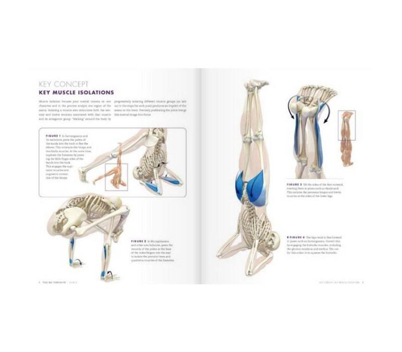 Ray Long Yoga Mat Companion lV - Arm Balances & Inversions