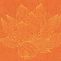 PranaPillow - Orange/Orange
