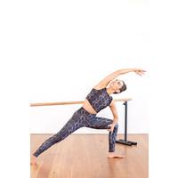 Dharma Bums Yoga Legging - Cobra