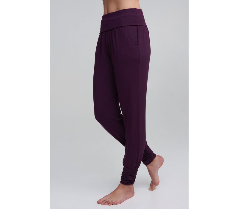 Asquith Long Harem Pants - Berry
