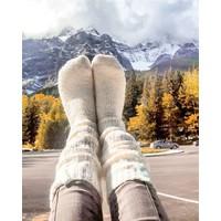 Soxs Women's Socks - Off White/Sage Green Knee High