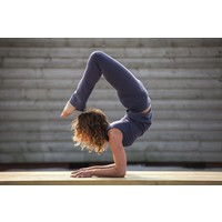 Urban Goddess Pranafied Yoga Hose - Rock