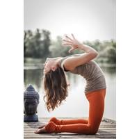 Urban Goddess Gaia Yoga Legging - Rust