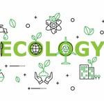 Ecologische producten