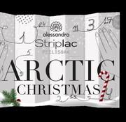 Alessandro Adventskalender Striplac  Artic Christmas