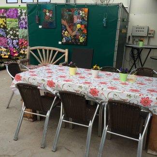 Terugblik op onze jaarlijkse open dagen - plantenweekend