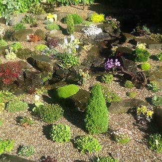 Tuin van een klant (2)