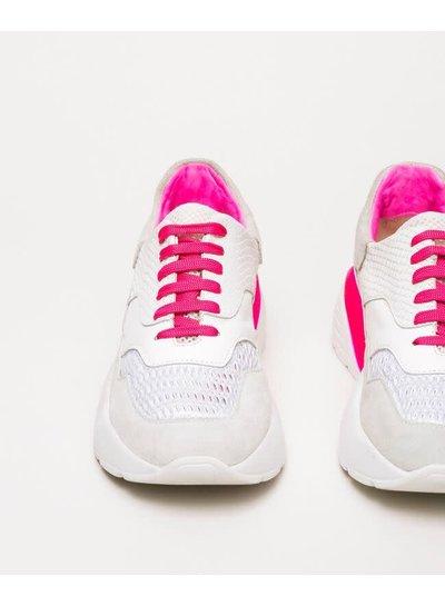 Twin-Set Sneaker Twin-Set TCP150