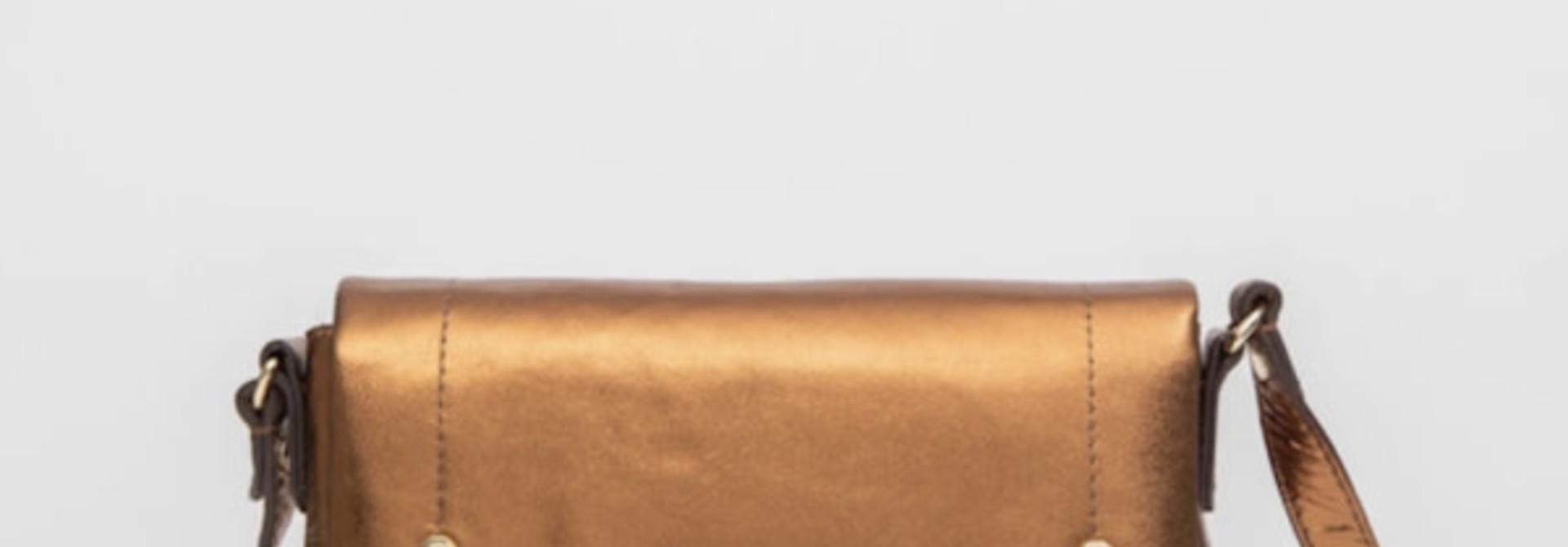 Dyonisos bronze Clio goldbrenner