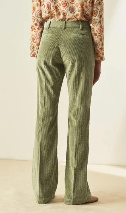 Limoges pants Momoni-3