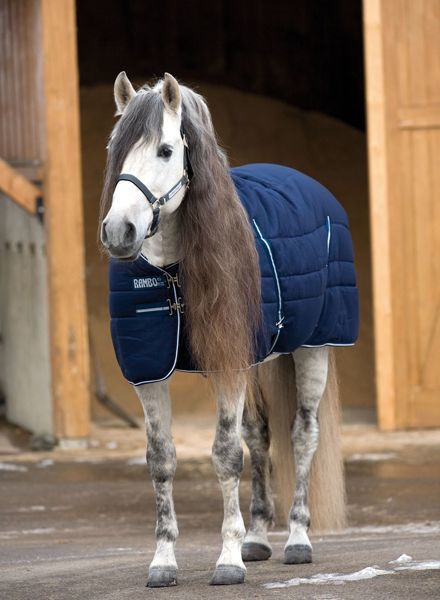 Horseware Rambo Stable Rug Medium 200gr