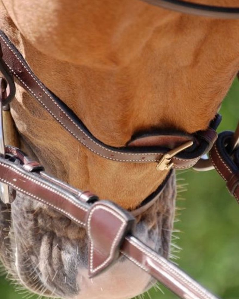 Dy'on Flash Noseband Bridle Brown