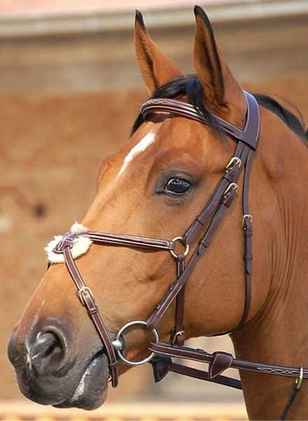 Dy'on Mexican Noseband Bridle Black