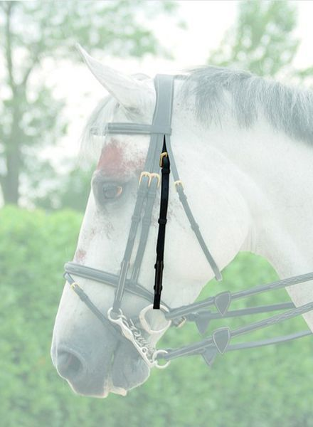 Dy'on Double Bridle Cheek Piece Brown