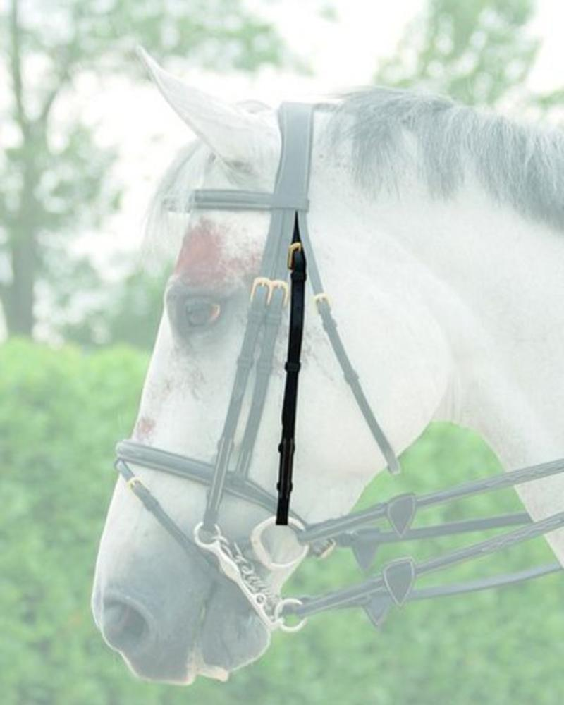 Dy'on Double Bridle Cheek Piece Black
