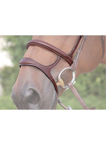 Dy'on Double Noseband Black