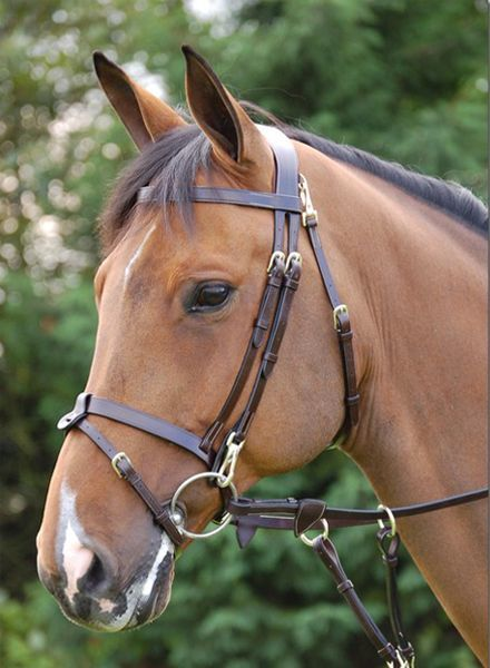 Dy'on Working Collection Training Bridle with Snaps Brown