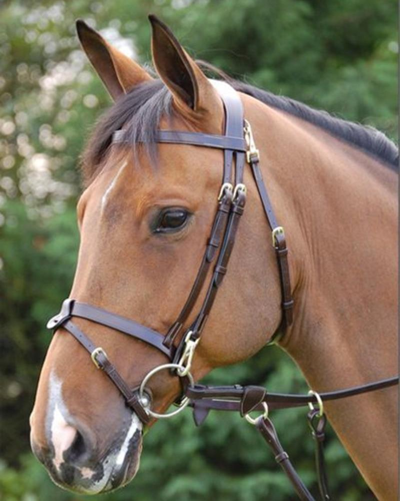 Dy'on Working Collection Training Bridle with Snaps Black