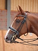Dy'on Dressage Collection Large Crank Noseband Double Bridle Black/White