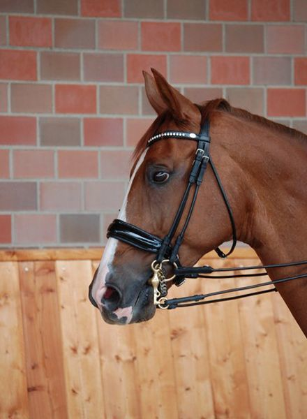 Dy'on Dressage Collection Large Crank Noseband Double Bridle Pattent Black/Black