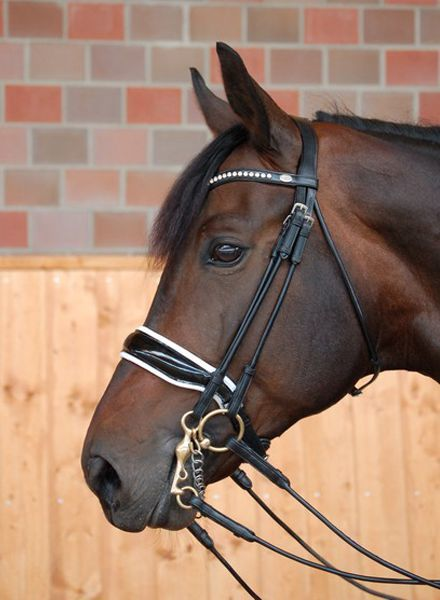 Dy'on Dressage Collection Large Crank Noseband Double Bridle Pattent Black/White