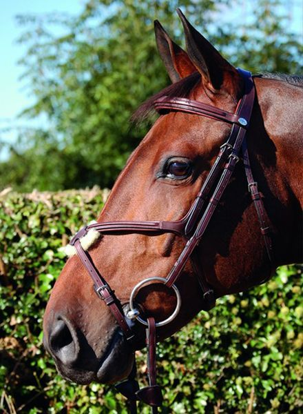 Dy'on New English Collection Mexican Bridle Brown