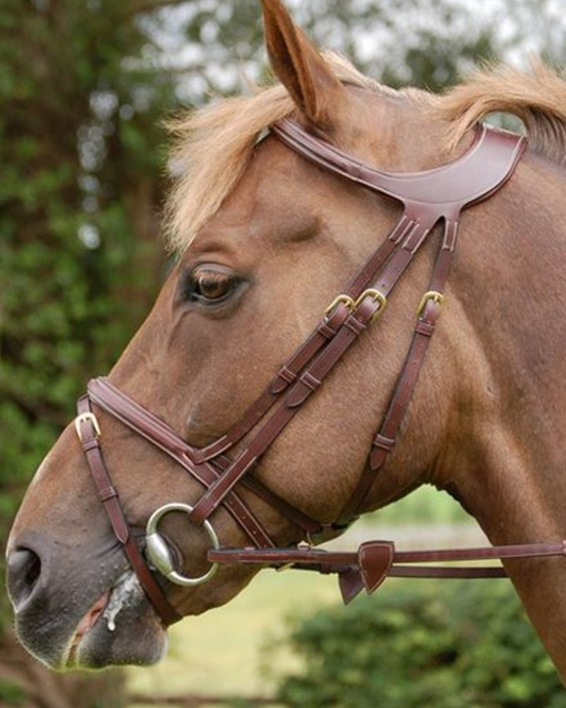 Dy'on Difference Collection Flash Bridle Noseband Brown