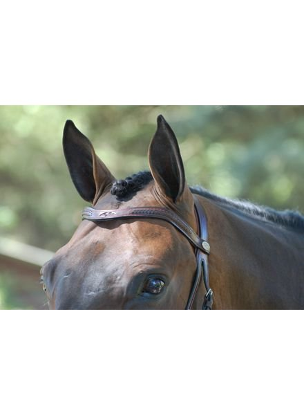 Dy'on Laced V Shape Browband