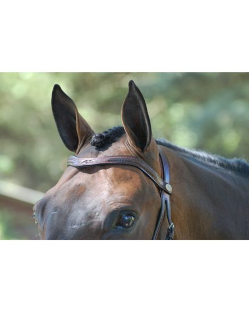 Dy'on Dy'on Laced V Shape Browband