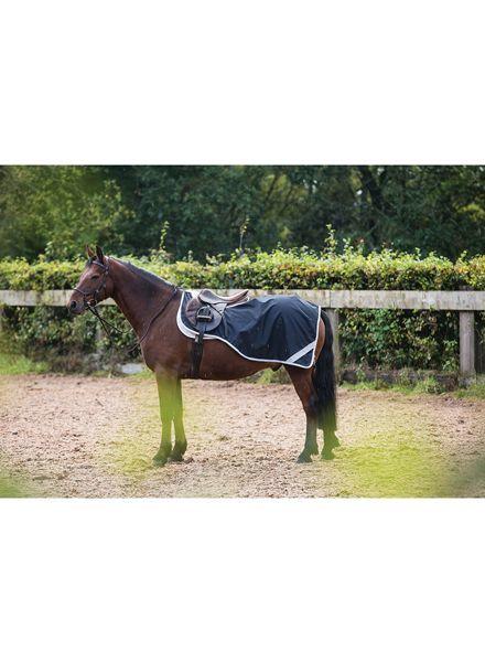 Horseware Amigo Pony Competition Sheet