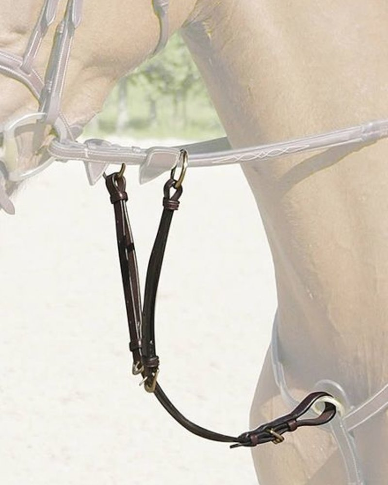 Dy'on Running Martingale Attachment