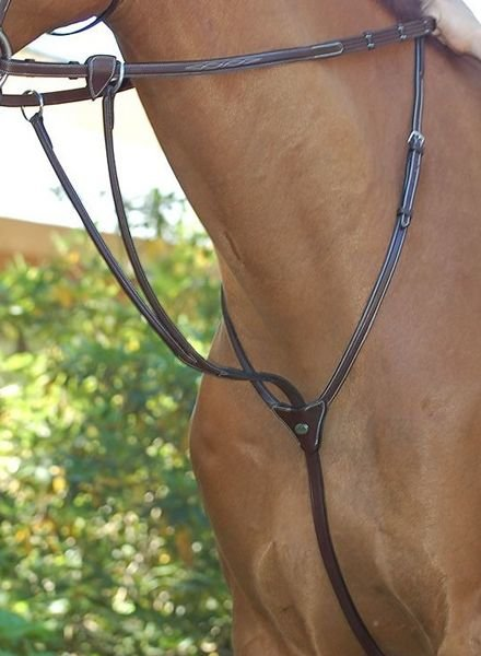 Dy'on Hunter Running Martingale