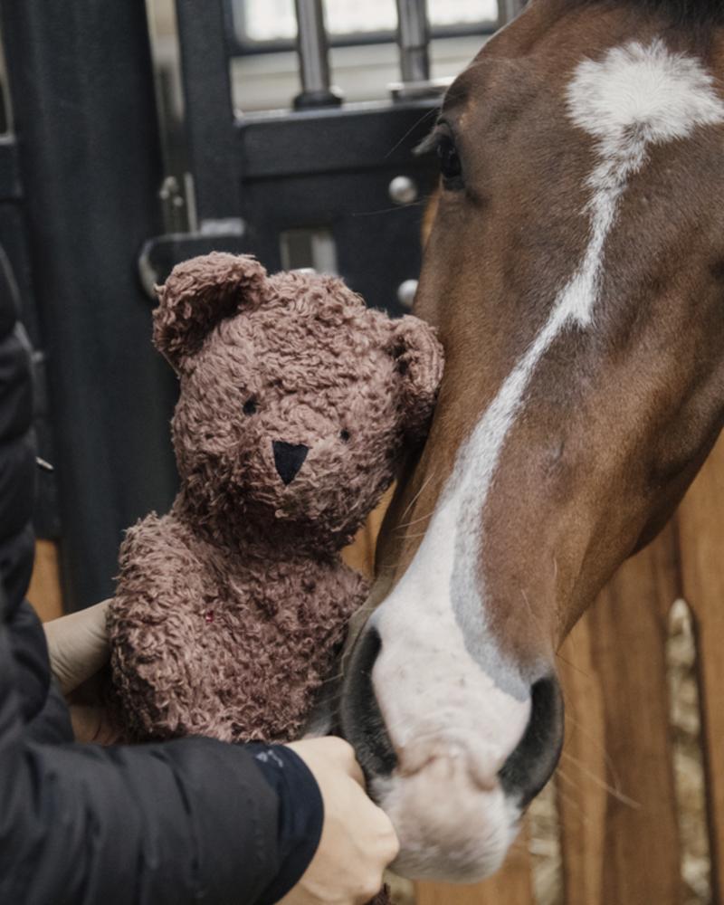 Kentucky Kentucky Relax Horse Toy Bear