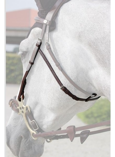 Dy'on N.E. Hackamore Cheek Pieces Brown