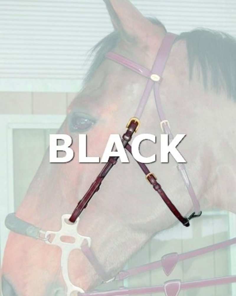 Dy'on Dy'on DC Hackamore Cheek piece Black