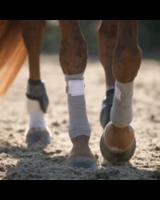Incrediwear Equine Therapeutic Exercise Bandages