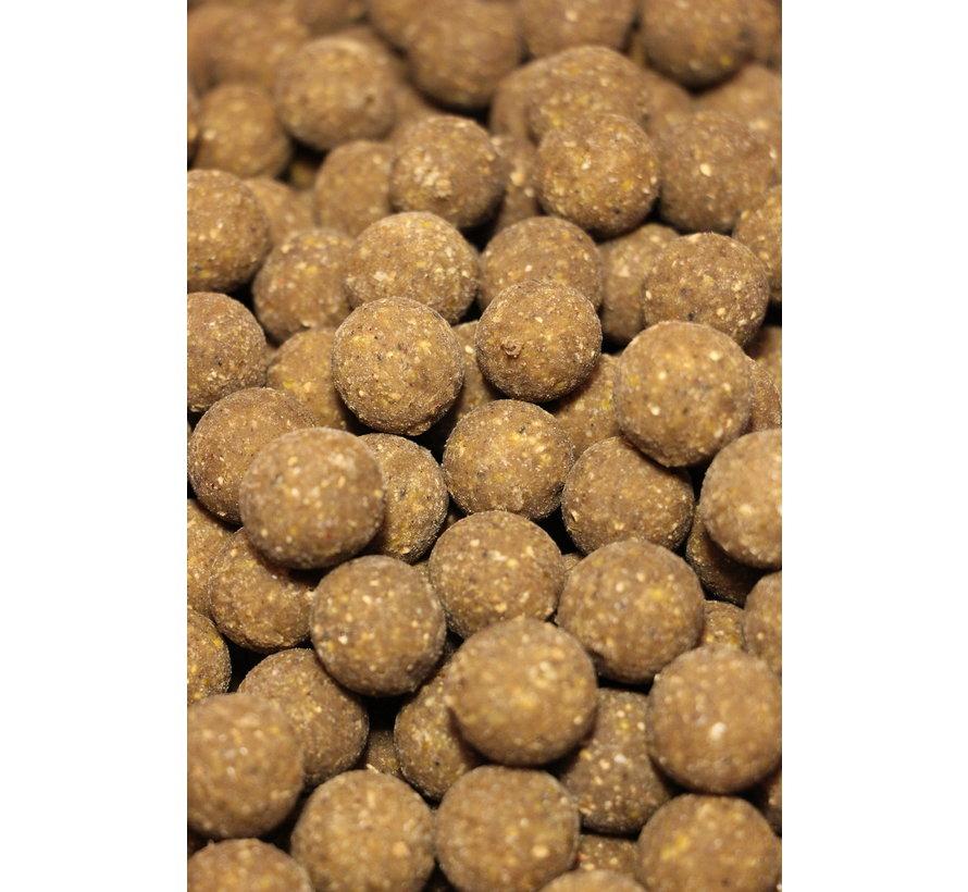 Repeater PRO boilies | 20MM | 1KG