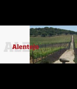 Cambridgeshire Wine School - Alentejo - 06 Oct