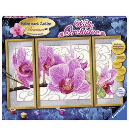 Ravensburger Schilderen op nummer Wilde Orchidee