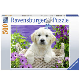 Ravensburger Schattige Golden Retriever - 500
