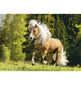 Ravensburger Vrolijk Paard - 1000