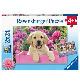 Ravensburger Harige Vriendjes 2X24