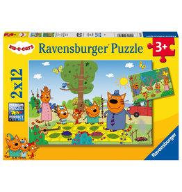 Ravensburger Familieuitje In De Natuur 2X12