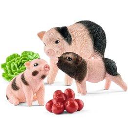 Schleich Schleich Farm World 42422 Minivarken en Biggetje