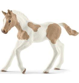 Schleich Schleich Horse Club 13886 Paint Horse Veulen