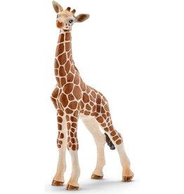 Schleich Schleich Wild Life 14751 Schleich 14751 Baby Giraffe