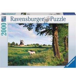 Ravensburger Ravensburger puzzel 166350 Paarden Voor De Windmolen - 2000 stukjes