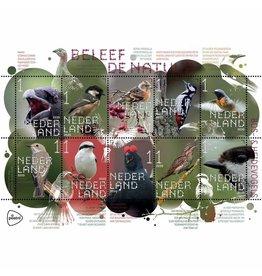 PostNL Postzegel vel 10  stuks 1 Bos- en Heidevogels Beleef de natuur