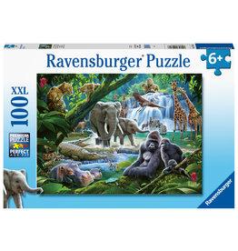 Ravensburger Ravensburger Puzzel 129706 Jungle Families 100 stukjes XXL
